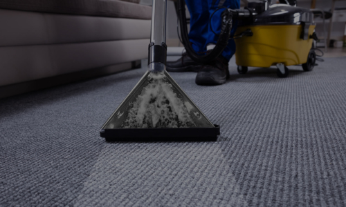 Welcome to A+ Carpet Cleaning & Janitorial Services' New Website